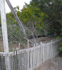 How To Build Wire Fences For Horses Deer Or Pasture