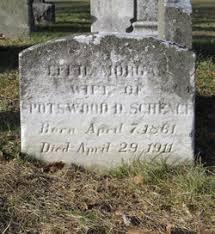 Effie Morgan Schenck (1861-1911) - Find A Grave Memorial