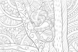 Koala Sier Stockvectors Rechtenvrije Koala Sier Illustraties