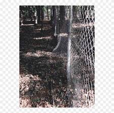 Lichtscheid Forest Tree Fence Sculpture Chain Link Fencing Hd Png Download 556x750 3247552 Pngfind