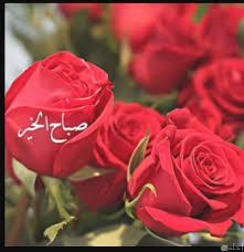 باقة ورد حمراء مكتوب عليها صباح الورد لم يسبق له مثيل الصور