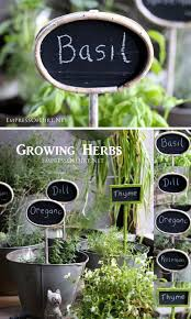 30 diy plant label marker ideas for