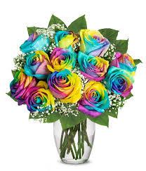 one dozen wild rainbow roses at from