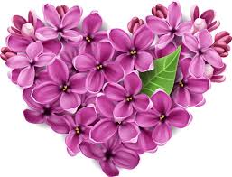 Vector flowers heart design elements Free vector in Encapsulated ...