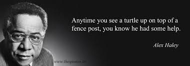 Anytime You See A Turtle Up On Top Of A Fence Post You Know He Had Some Help Alex Haley Quotes