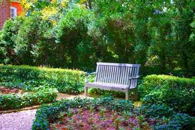 park bench in flower garden free stock