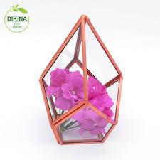crafts hurricane lantern glass globes