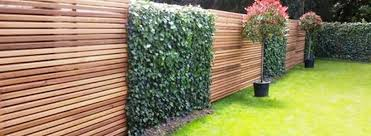 115 Amazing Ideas To Make Fence With Evergreen Plants Landscaping Rockindeco