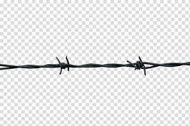Black And White Barbed Wire Design Barbwire Transparent Background Png Clipart Hiclipart