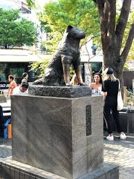 Hachikō, Tokyo, Japan - The Hachiko statue is a memorial to ...