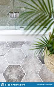 Gray Hexagon Bathroom Tile With Fern Stock Image - Image of shower, custom:  173727343