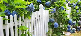 How To Diy A White Picket Fence Doityourself Com