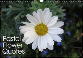 buy pastel flower quotes beautiful flowers and inspiring