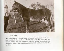 Merrie's Page - ADA JONES - foaled 1918 sired by Little...   Facebook
