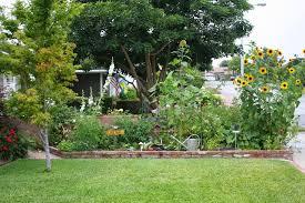 growing an urban vegetable garden