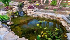 best pond pumps that won t clog 6