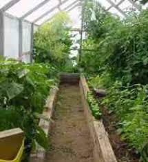hydroponic greenhouse a gardeners nirvana