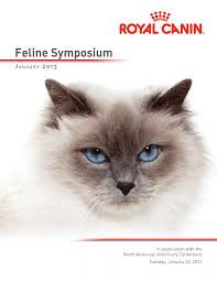 cats with cancer and diabetic cats with
