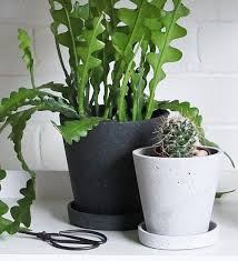 indoor hanging plant pot in stone