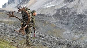 hoyt life bow hunting hoyt archery