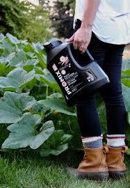 best organic fertilizer and plant food