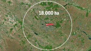 Ce se va întâmpla cu Pădurea Băneasa din martie. Sute de copaci, tăiaţi în ultimele zile - Stirileprotv.ro