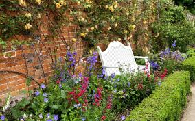 best plants for narrow borders and