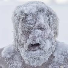 اجمل الصور المضحكة عن الشتاء صور حيوانات ظريفة جدا