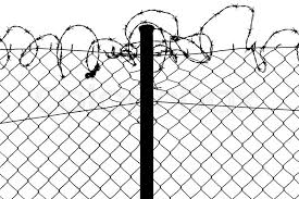 Isolated Fence With Barbed Wire Stock Image Colourbox