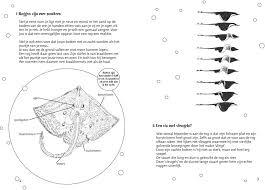 Een Vis Met Vleugels Informatie Over Roggen Pdf Free Download