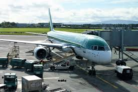 review of aer lingus flight from dublin