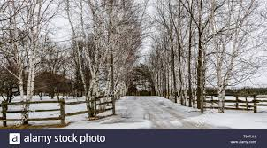 Farm Driveway High Resolution Stock Photography And Images Alamy