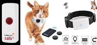 The 9 Best Cat Trackers Of 2020 Gps Radio Cat Tracker Subscription Free Buskers Cat