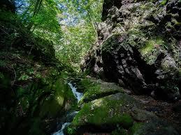 御岳山~大岳山:ロックガーデンと滝を巡る | 山と水