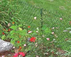 Critter Guard Chain Link Products Fence All Ottawa On