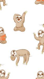 cute sloth wallpapers top free cute