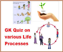 gk questions and answers on life processes
