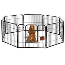 Guide For Buying A Dog Fence For Your Pets Dog Fence Reviews