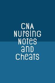 cna nursing notes and cheats funny nursing theme notebook journal