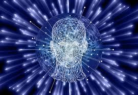 La Inteligencia Ejecutiva (II)