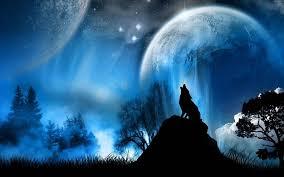 animales nocturnos planetas luna s fondos de pantalla gratis