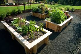 kids gardening tips ideas projects