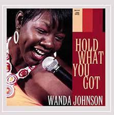 Wanda Johnson - Hold What You Got (2008, CD) | Discogs