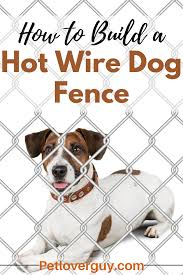 How To Build A Hot Wire Dog Fence Dog Fence Dogs Dog Infographic