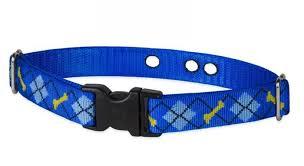 Lupine 1 Dapper Dog Underground Containment Collar