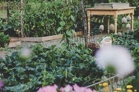 edible garden layouts 101 salisbury