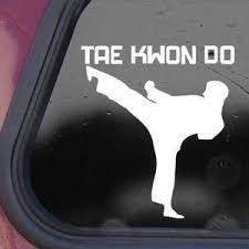 Amazon Com Karate Martial Arts Taekwondo White Decal Sticker Die Cut White Decal Sticker Automotive