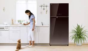 Tủ lạnh Toshiba có tốt không ? Các công nghệ và tính năng nổi bật của tủ  lạnh Toshiba là gì ?