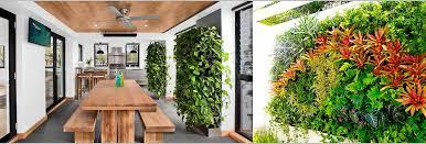 10 best indoor vertical garden plants