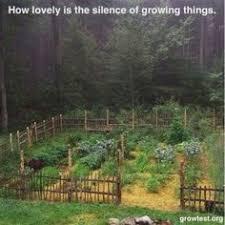 30 Twig Fences Ideas Backyard Garden Twig